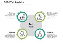 B2B Web Analytics Ppt Powerpoint Presentation Gallery Information Cpb