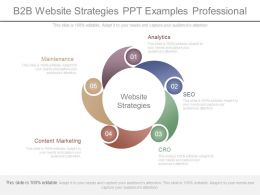 B2b Website Strategies Ppt Examples Professional
