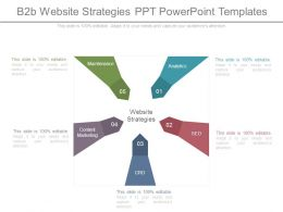 B2b Website Strategies Ppt Powerpoint Templates
