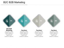 B2C B2B Marketing Ppt Powerpoint Presentation Ideas Icon Cpb