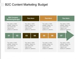 B2C Content Marketing Budget Ppt Powerpoint Presentation Pictures Graphic Tips Cpb