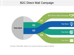 B2c Direct Mail Campaign Ppt Powerpoint Presentation Pictures Brochure Cpb
