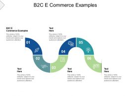 B2C E Commerce Examples Ppt Powerpoint Presentation Ideas Outline Cpb