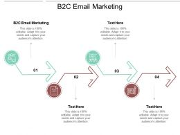 B2c Email Marketing Ppt Powerpoint Presentation File Graphics Example Cpb