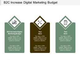 B2C Increase Digital Marketing Budget Ppt Powerpoint Presentation Pictures Graphic Images Cpb