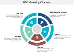 B2C Marketing Channels Ppt Powerpoint Presentation File Design Templates Cpb