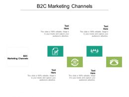 B2C Marketing Channels Ppt Powerpoint Presentation Infographics Cpb