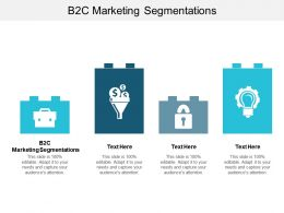 B2C Marketing Segmentations Ppt Powerpoint Presentation Model Show Cpb
