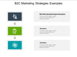 B2C Marketing Strategies Examples Ppt Powerpoint Presentation Infographic Template Infographic Cpb