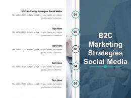 B2C Marketing Strategies Social Media Ppt Powerpoint Presentation Summary Maker Cpb