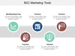 B2C Marketing Tools Ppt Powerpoint Presentation Styles Visuals Cpb