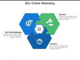 B2c Online Marketing Ppt Powerpoint Presentation Model Background Image Cpb