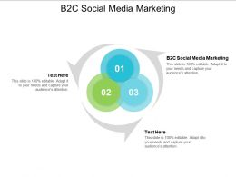 B2C Social Media Marketing Ppt Powerpoint Presentation File Graphics Tutorials Cpb