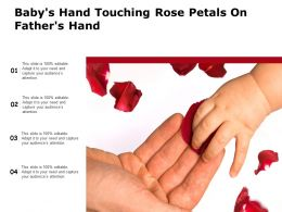 Babys Hand Touching Rose Petals On Fathers Hand