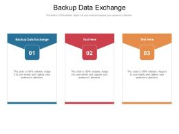 Backup Data Exchange Ppt Powerpoint Presentation Outline Styles Cpb