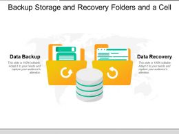 Backup Storage And Recovery Folders And A Cell