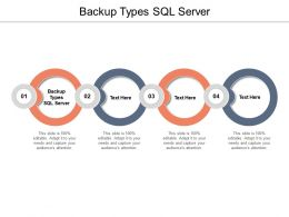 Backup Types SQL Server Ppt Powerpoint Presentation Infographics Graphics Cpb