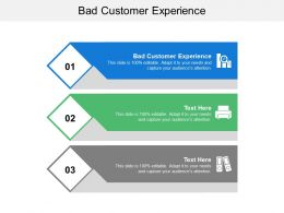 Bad Customer Experience Ppt Powerpoint Presentation File Background Image Cpb