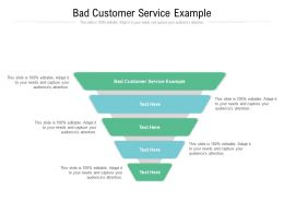 Bad Customer Service Example Ppt Powerpoint Presentation Slides Infographic Template Cpb