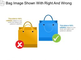 Bag Image Shown With Right And Wrong
