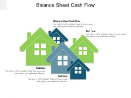 Balance Sheet Cash Flow Ppt Powerpoint Presentation Pictures Summary Cpb