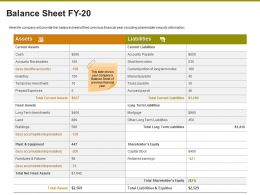Balance Sheet FY 20 Ppt Powerpoint Presentation Layouts Format Ideas