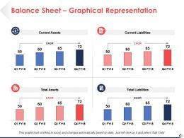 Balance Sheet Graphical Representation Business Ppt Professional Background Images