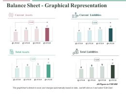 Balance Sheet Graphical Representation Ppt Slides Demonstration