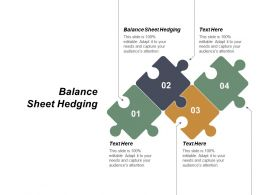 balance_sheet_hedging_ppt_powerpoint_presentation_layouts_influencers_cpb_Slide01