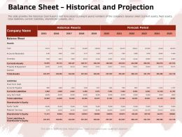 Balance Sheet Historical And Projection Forecast Period Ppt Powerpoint Presentation File Icon