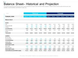 Balance Sheet Historical Projection Equity Crowdsourcing Pitch Deck Ppt Layouts Layouts