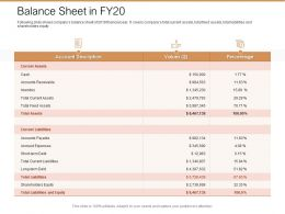 Balance Sheet In Fy20 Ppt Powerpoint Presentation Pictures Outline