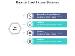 Balance Sheet Income Statement Ppt Powerpoint Presentation Pictures Cpb