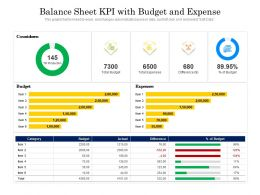 Balance Sheet KPI With Budget And Expense