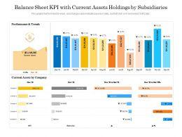 Balance Sheet KPI With Current Assets Holdings By Subsidiaries