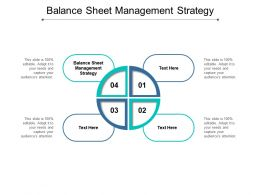 Balance Sheet Management Strategy Ppt Powerpoint Presentation Icon Outfit Cpb