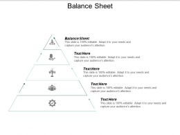 Balance Sheet Ppt Powerpoint Presentation Gallery Visuals Cpb