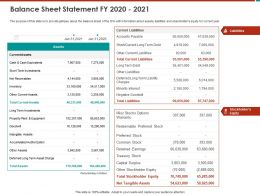 Balance Sheet Statement FY 2020 2021 Options Warrants Ppt Powerpoint Presentation File Model