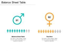 Balance Sheet Table Ppt Powerpoint Presentation Gallery Design Ideas Cpb