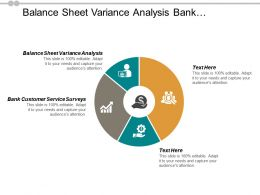 Balance Sheet Variance Analysis Bank Customer Service Surveys Cpb