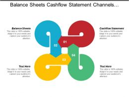 Balance Sheets Cashflow Statement Channels Distribution Collaboration Equity Marketing