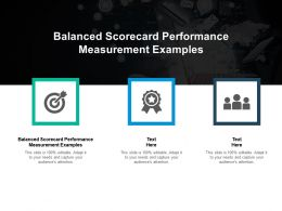 Balanced Scorecard Performance Measurement Examples Ppt Powerpoint Presentation Slides Structure Cpb