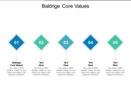 Baldrige Core Values Ppt Powerpoint Presentation Professional Diagrams Cpb