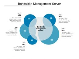 Bandwidth Management Server Ppt Powerpoint Presentation Icon Deck Cpb