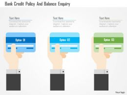 Bank Credit Policy And Balance Enquiry Flat Powerpoint Design
