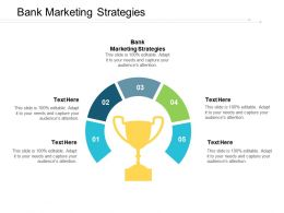 Bank Marketing Strategies Ppt Powerpoint Presentation Pictures Guidelines Cpb