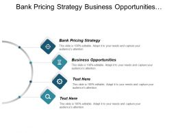 Bank Pricing Strategy Business Opportunities Strategic Planning Solutions Cpb