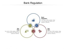 Bank Regulation Ppt Powerpoint Presentation Show Styles Cpb