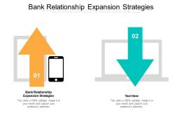 Bank Relationship Expansion Strategies Ppt Powerpoint Presentation Pictures Diagrams Cpb