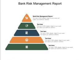 Bank Risk Management Report Ppt Powerpoint Presentation Outline Slide Cpb